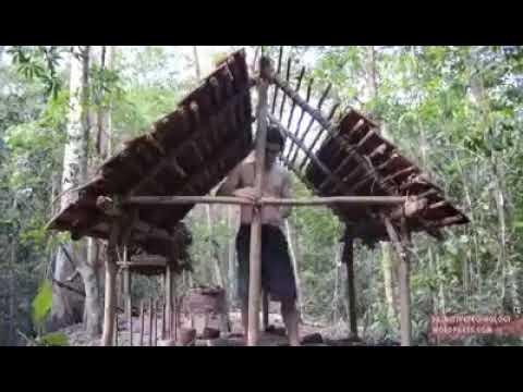 Cara bertahan hidup di hutan tanpa alat modern