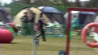 2010年3月27日ドギーズパーク滋賀でOPDESアジリティ大会が行われ...