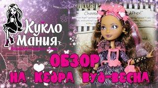 Видео обзор куклы Эвер Афтер Хай Cedar Wood - Весна / Ever After High