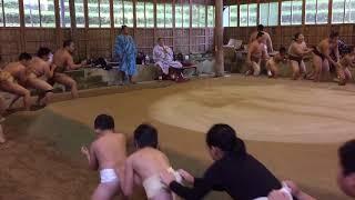 平成29年11月5日 伊勢ケ濱部屋に田川相撲クラブの力士が朝稽古に参加さ...