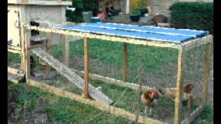 Chicken Coops Direct To You | Plans Of Chicken Coops Direct Download