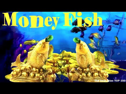 Money. The Goldfish Grants Wishes, Performs Miracles, Brings Wealth. Feng Shui