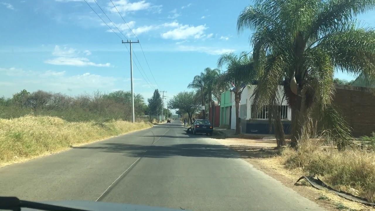 Terraza Las Palmas Casco De Hacienda De San Antonio