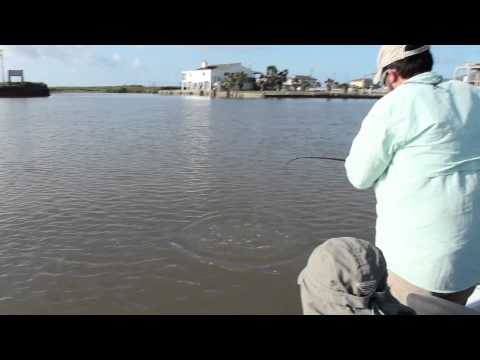 Lone Star Life: Texas Saltwater Fishing - Quick Limit Of Reds