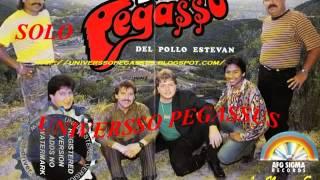 PEGASSO DEL POLLO ESTEVAN EN VIVO EN DUELO PEGASSERO