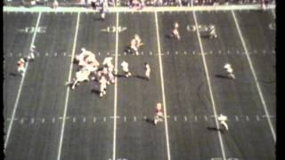 Tennessee vs. Washington State University, 1988