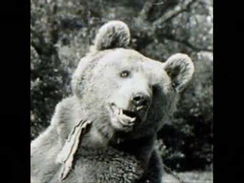 Wojtek the Soldier Bear - WWII - YouTube
