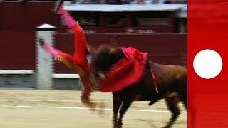 Быки покалечили трех матадоров на корриде в Испании
