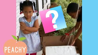Boy Or Girl?🤔 | Funny Gender Reveal Reactions