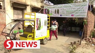Nature lover opens a  free tree clinic in India