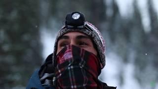 The Winter Moose