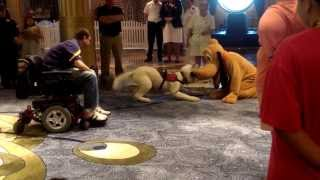 A Service Dog Meets Pluto aboard the Disney Fantasy