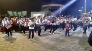 moseñada bolivia 2017