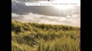 Siebzehn - Plasmaland [Spiral Trax]