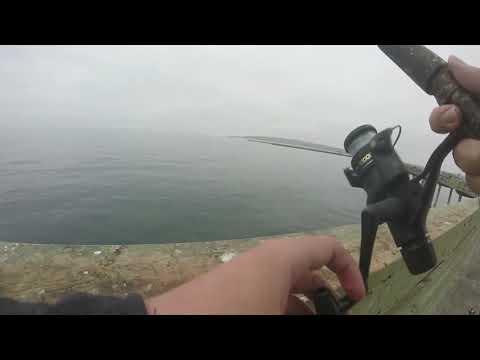 08/31/20 Quarantine Crisis! Ocean Beach Pier 5 Fishing And Catching Mackerel