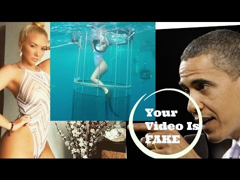 Molly Cavalli's Viral Video Of Shark Attack During Cage Dive 'Is A Fake'!