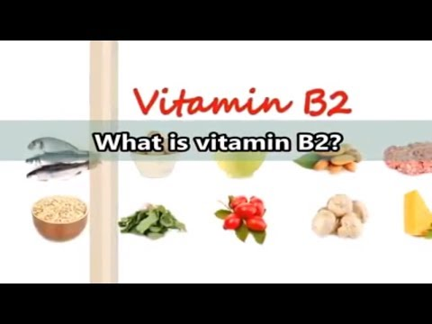 what-is-vitamin-b2-(riboflavin)?-vitamin-b2-for-adrenal-health