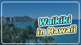 하와이 와이키키 해변(쉐라톤 와이키키)