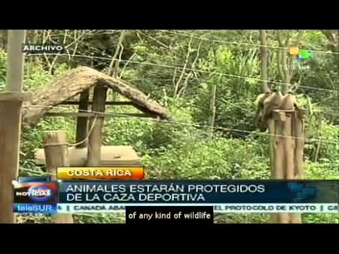 Costa Rica Bans Sport Hunting