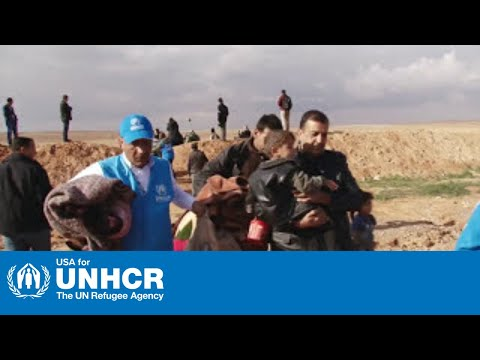 Who We Are: The UNHCR Story