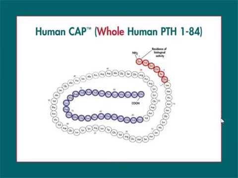 Conduite à tenir devant un dosage de parathromone élevé