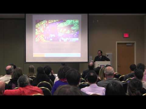 Mitchell J  Chang, Ph D - Lecture on Asian Americans & Affirmative Action (UofA, 11/10/16)