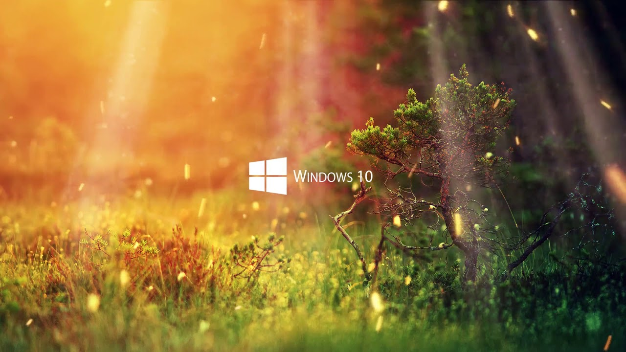 Windows 10 Nature Live Wallpaper 12 Youtube