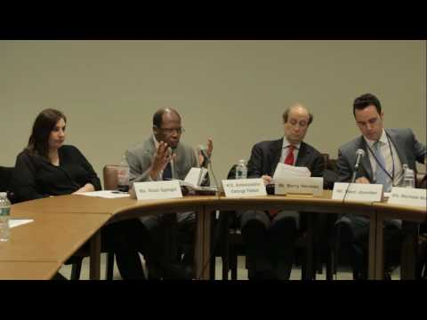 UN Panel - 54th Session of the Commission for Social Development