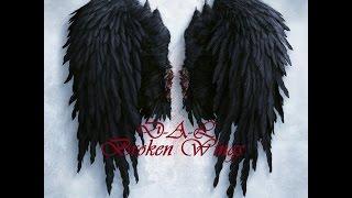 D A L Broken Wings Music Video Prod Tido Vegas