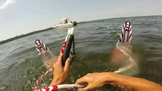 Attaque de requin en ski nautique !!!