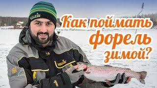 Рыбалка на форель зимой. Первый лед. Ловля на жерлицы и блесну.