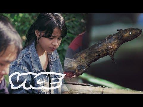 Mampir Ke Ibu Kota Daging Ekstrem Indonesia