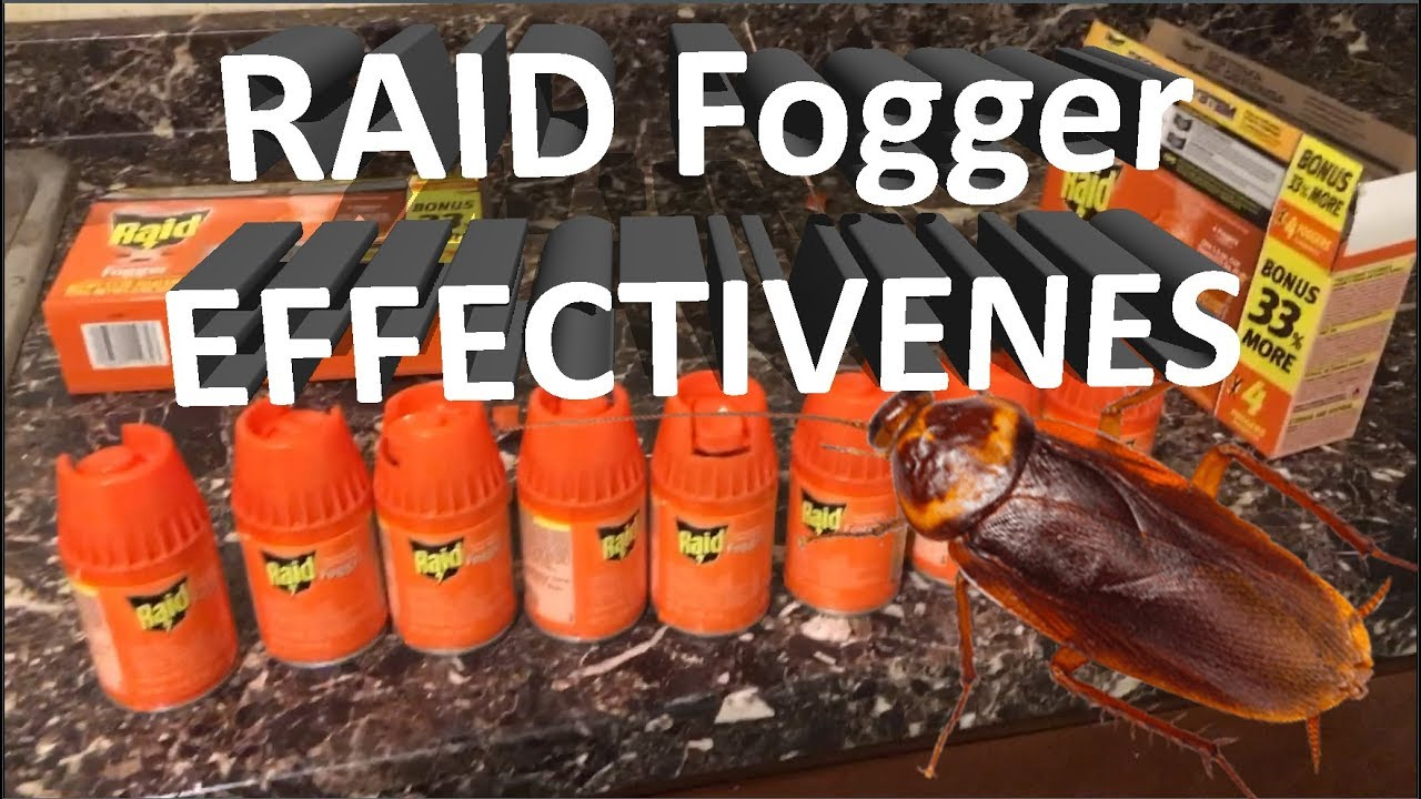 7 Best Roach Bomb for House in 2019 Reviewed – PestPolicy