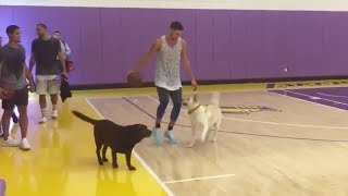 Klay Thompson Plays 1-on-2 vs Dogs, BRICKS Shot