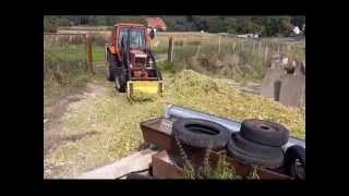 Fortschritt E 281 beim Mais häckseln LP...