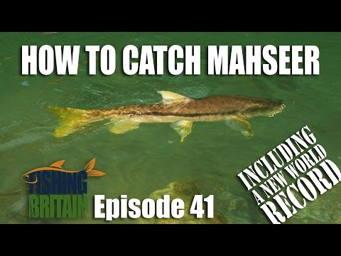 How To Catch Mahseer - Fishing Britain, Episode 41