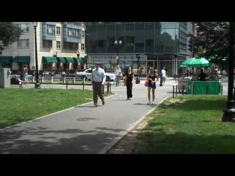 Boston Common - Summer Day