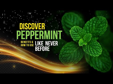 PEPPERMINT OIL BENEFITS: the Essential facts