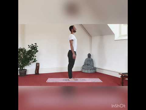 easy yoga stretching part 2  youtube