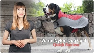 Warm Nylon Dog Coat for Walking in Cold Weather - Review