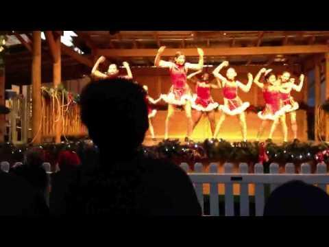 Xmas 2011 Run Rudolph Run
