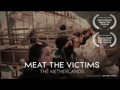 250 Vegan Activists Occupy Dutch Pig Farm | MEAT THE VICTIMS