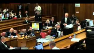 Oscar Pistorius Trial. Day 3. Part 1. Missing 10 Min