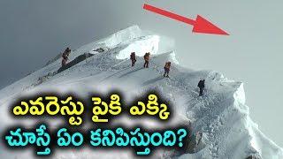 ఎవరెస్ట్ పైకి ఎక్కిచూస్తే ఏం కనిపిస్తుంది? The Heroes of Everest | Telugu Brain