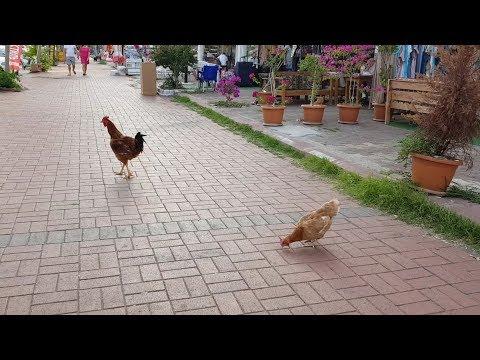 Рынок Кириш! Тут не торгуются! ( Турция!  Кемер!
