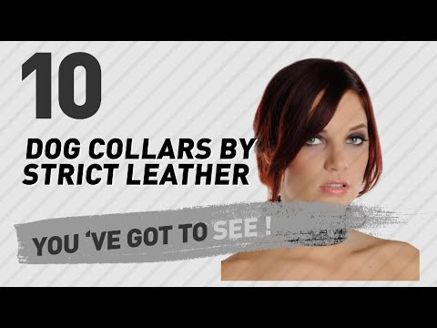 Dog Collars By Strict Leather // Top 10 Most Popular