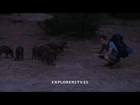 Tom explora Sierra Espuña