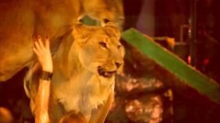 Легендарное шоу «Королевский цирк Гии Эрадзе» в Самаре