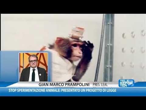 Risultati immagini per Gian Marco Prampolini Presidente di LEAL