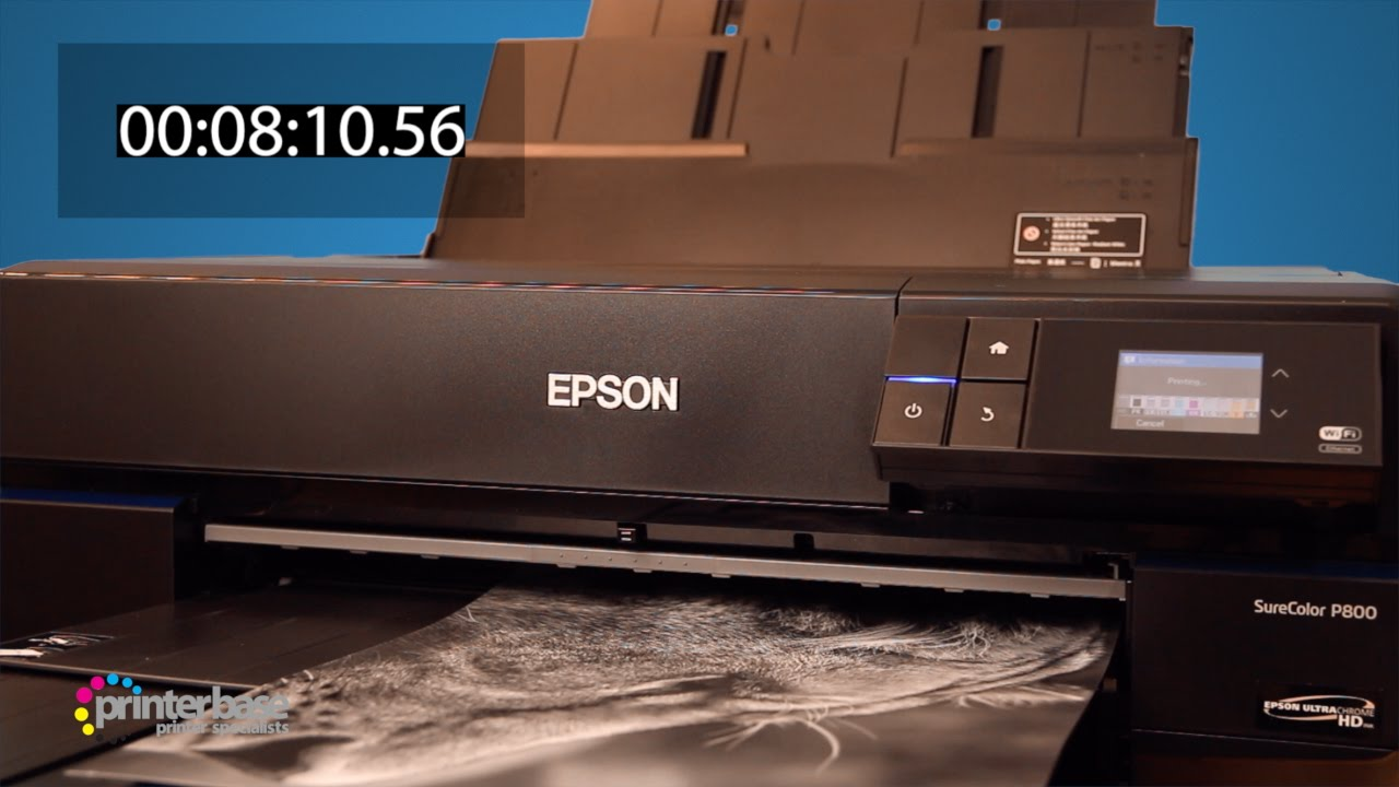 Epson SureColor P800 Reviews - Curated List of the Best